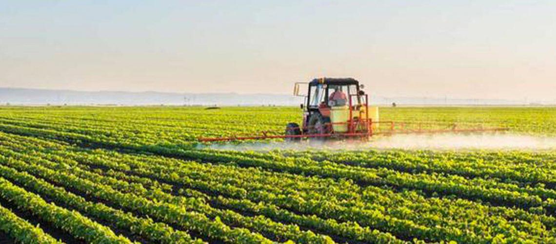 agricolutira